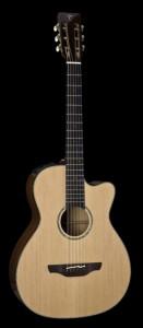 Takamine fingerstyle guitar